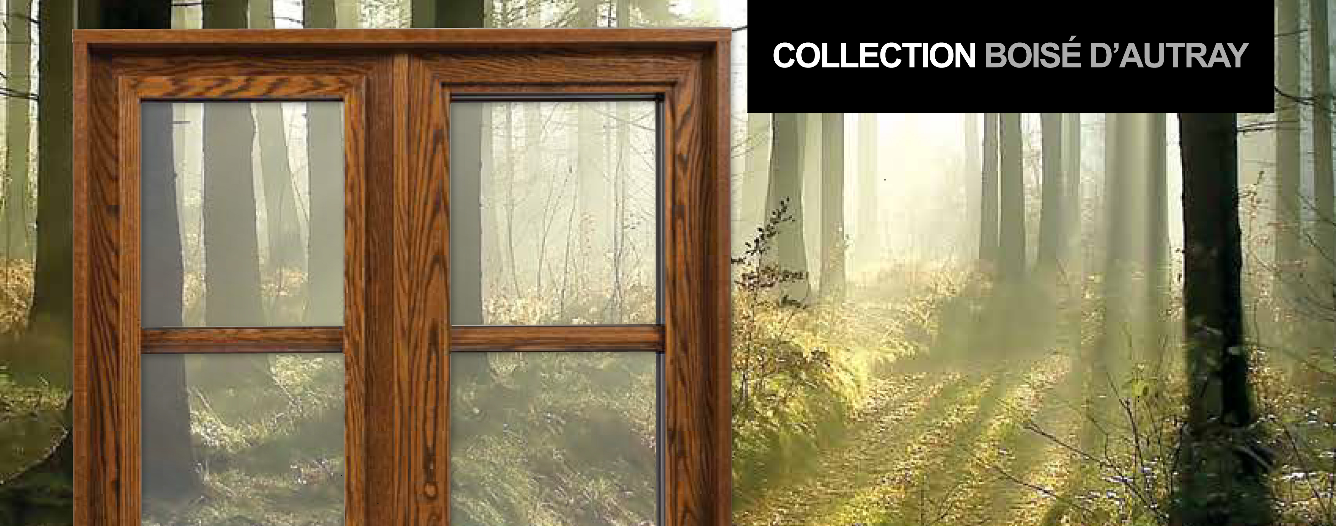 Fen tres de bois portatec fabricant de porte d 39 entr e for Porte fenetre bois sur mesure