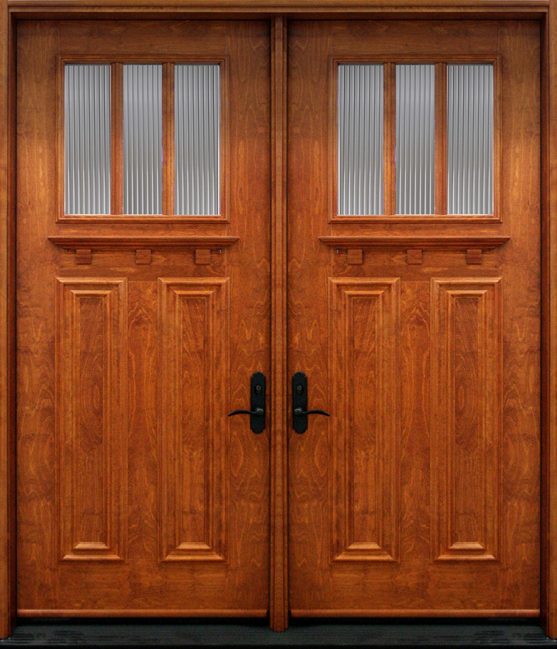Nbv37 2 porte double acier bois panneaux d coratifs for Double porte bois